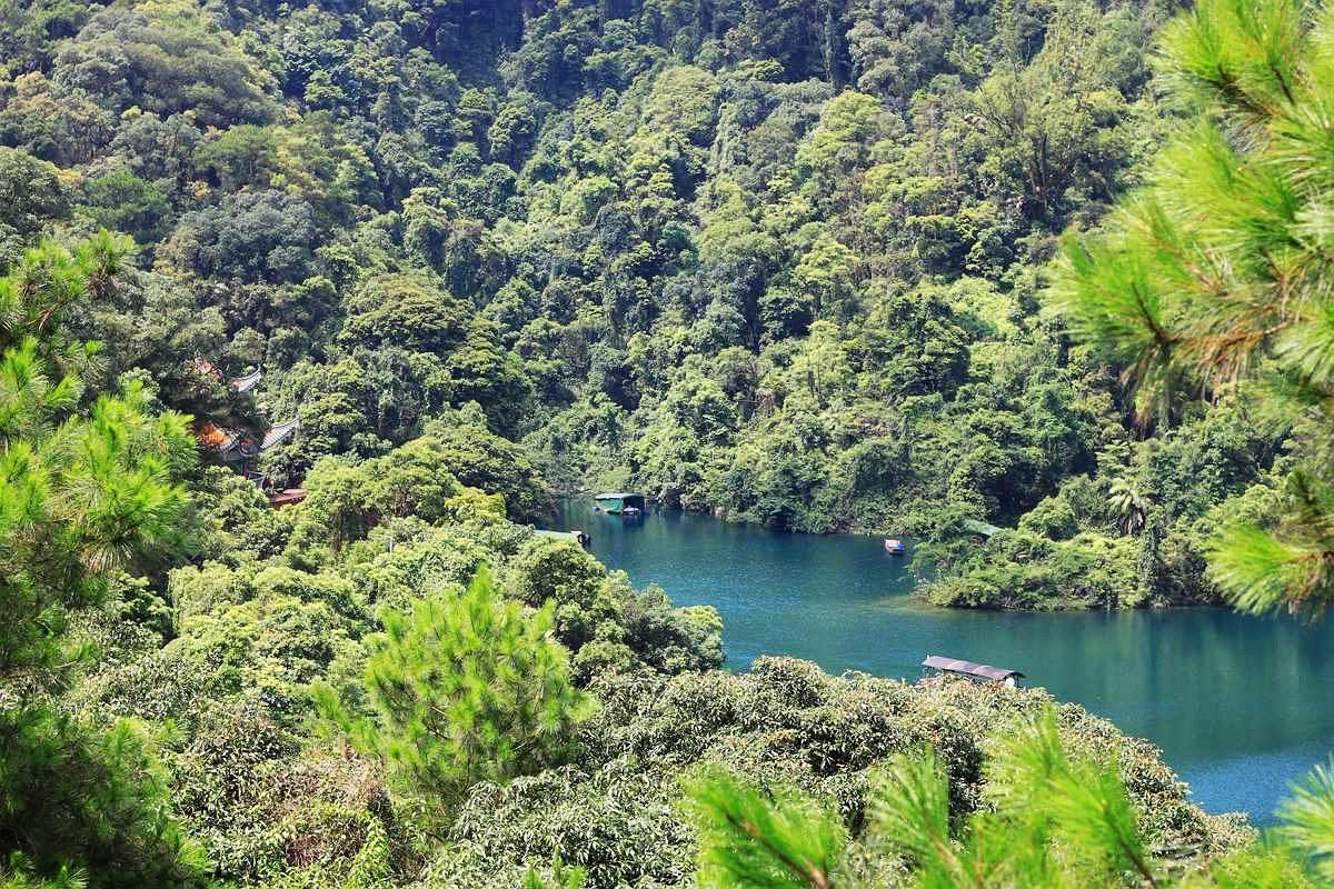 中國第一個自然保護區,被譽為綠洲上的明珠,就在廣東