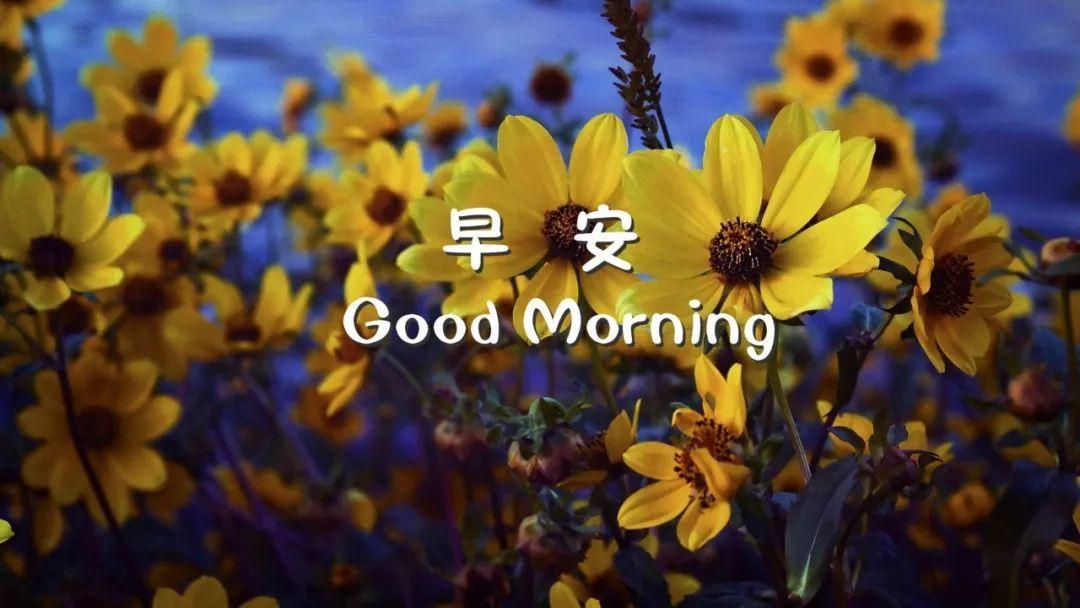 2019年早晨励志激励语,早安激励人心的励志语句