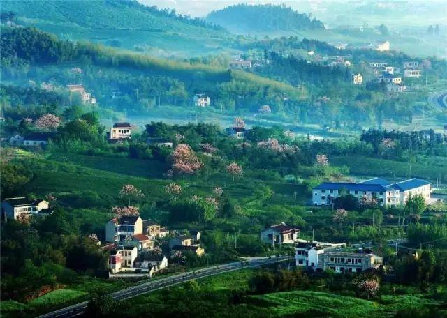 溧阳:孟郊写《游子吟》的这座小城,迷人在哪里?