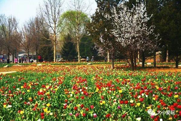 春夏交接的四月原来有这么多好活动,你还打算窝在家吗?