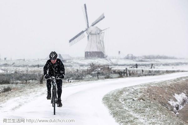 冷冷冷,荷兰一夜入冬!跌破零度,居然还要下雪了?!