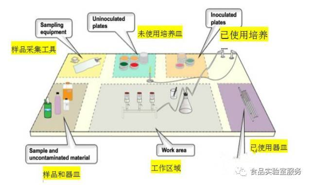 环境微生物的检测原理_微生物检测