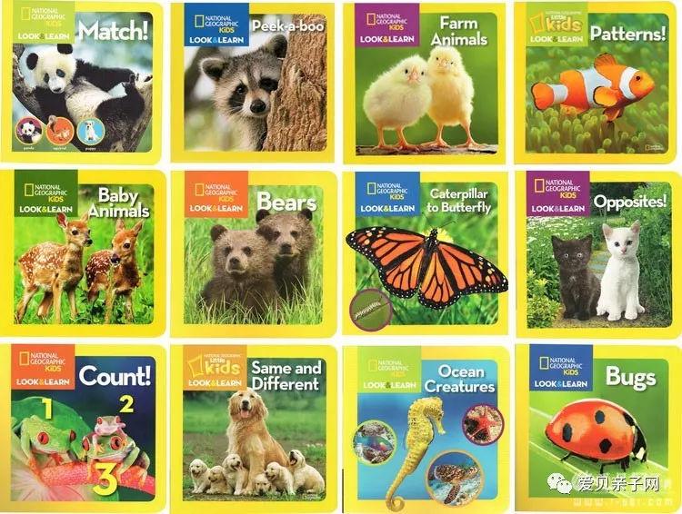 《美国国家地理少儿版》12册纸板书!美国地理协会专为孩子打造的科普绘本!