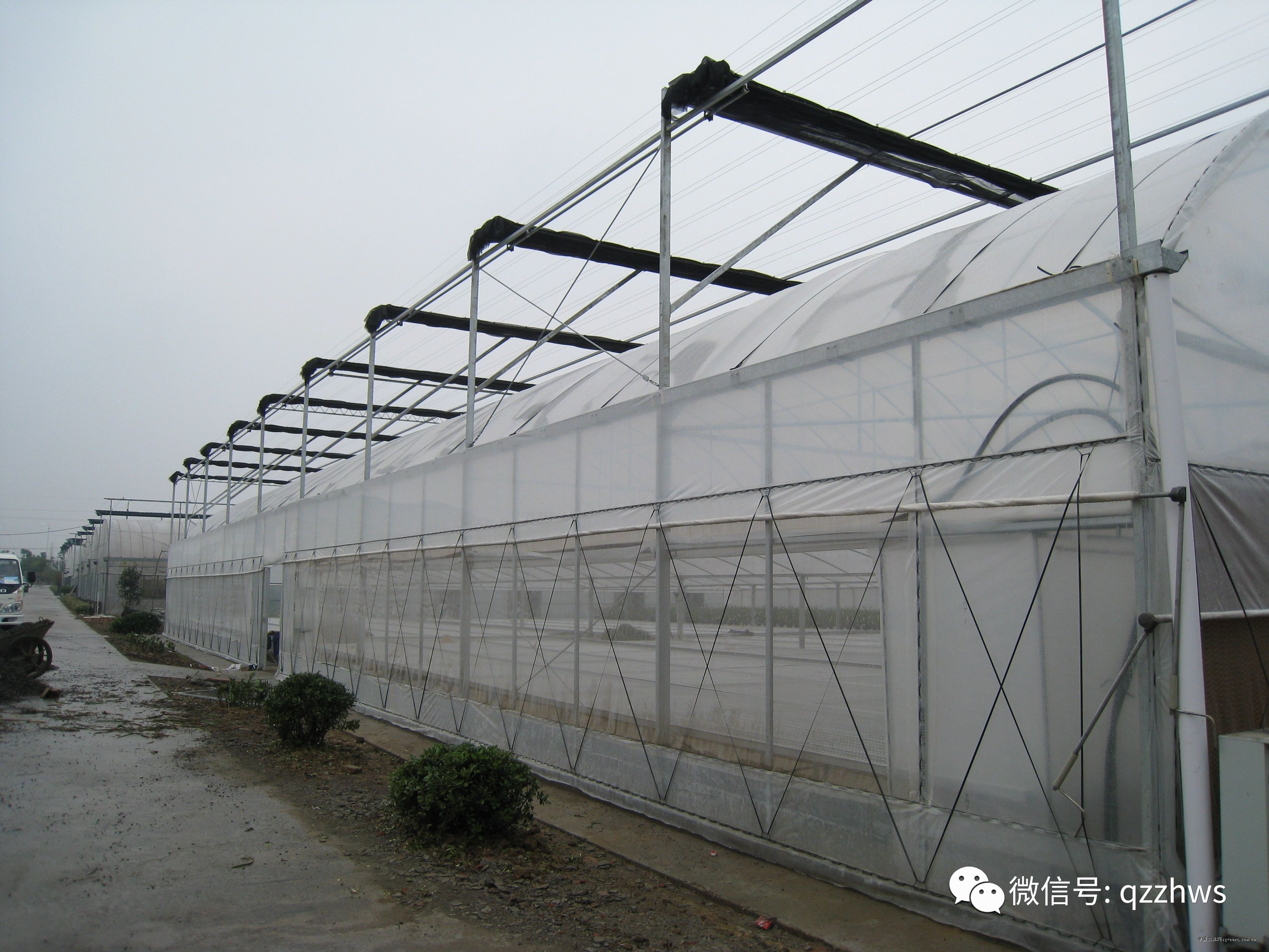 建一个大棚需要多少钱? - 蔬菜种植 - 黔农网