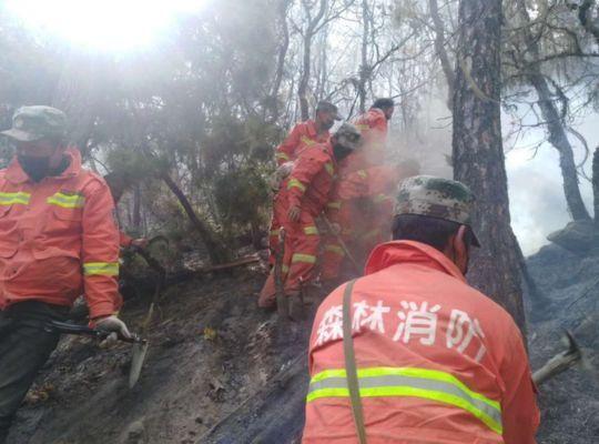 今日 四川凉山木里 冕宁两县投入1600余人灭火