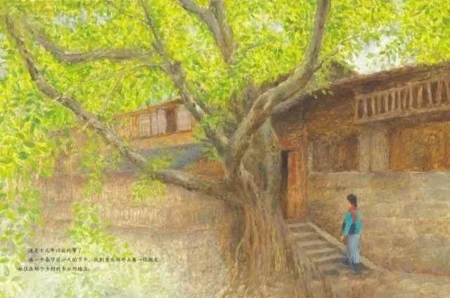 拿到这本绘本版的《小橘灯》,一下子把我推到了几十年前,但翻看着插图,也有点不一样的感觉:枝繁叶茂的黄果树、逼仄的石板街和房间里的小竹凳,画者多用明亮的暖色调来描写主人公,炙热炙热的红色围巾,嫩绿嫩绿的树叶,暖黄暖黄的小橘灯的特写,仿佛也让看到小女孩对未来的图片