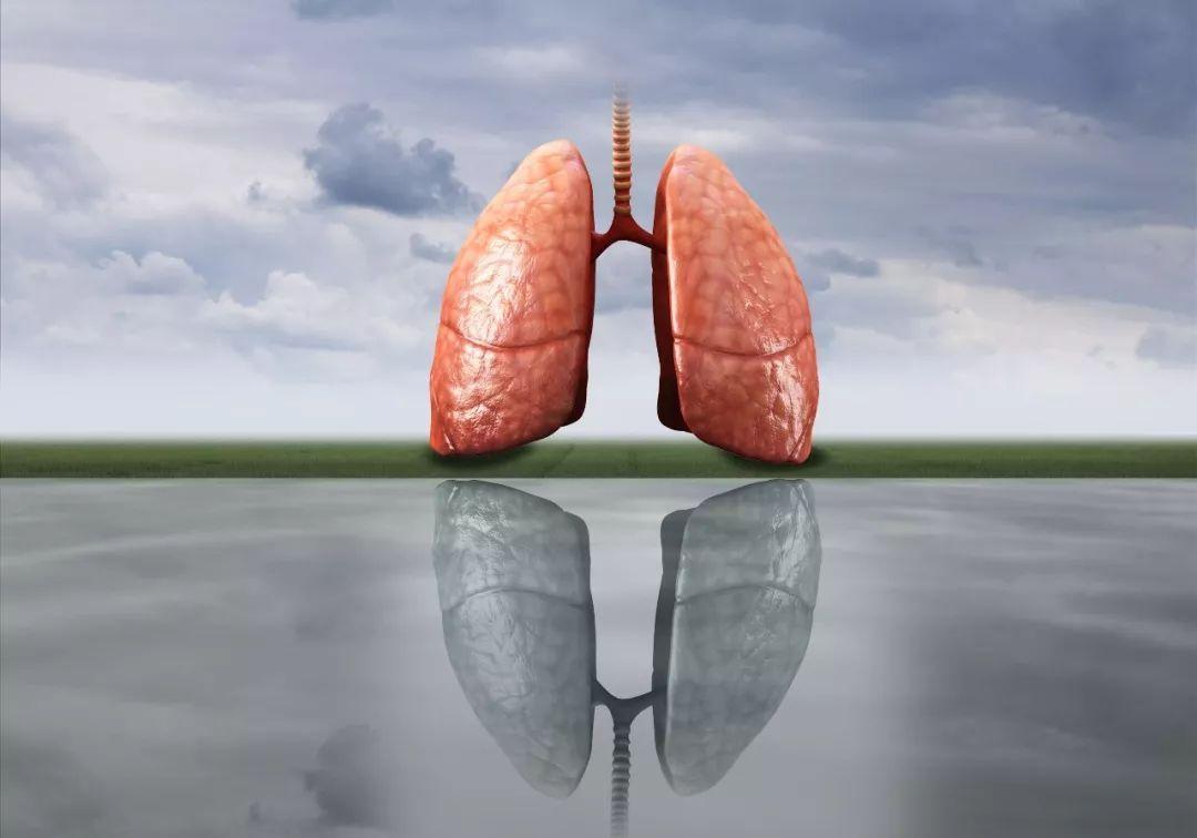 肺结核人口腔呼出的气体_预防肺结核手抄报