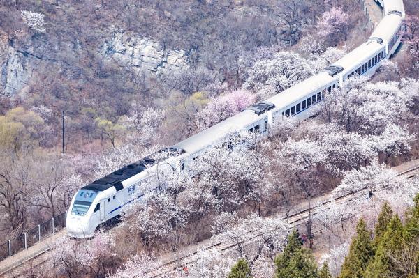 亚洲美好列车清单