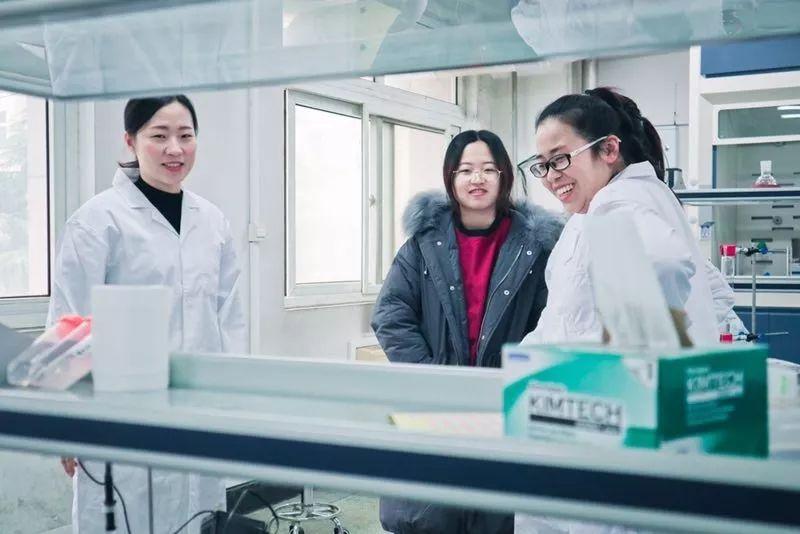 90后女教授王虹:科研,就是见贤思齐焉