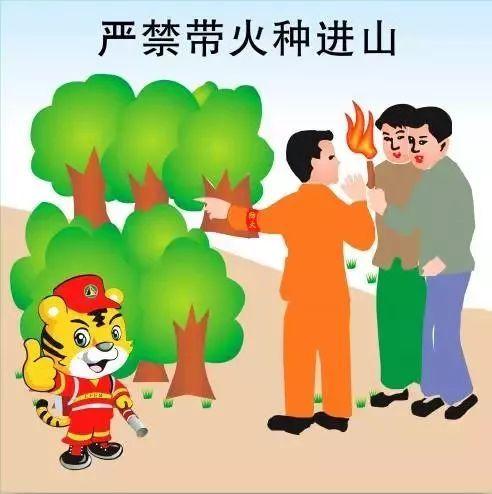 警惕!这些森林防火常识你必须了解!