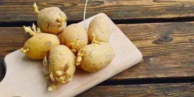 馬鈴薯放冰箱容易發芽?隻是因為放錯瞭位置_濕度