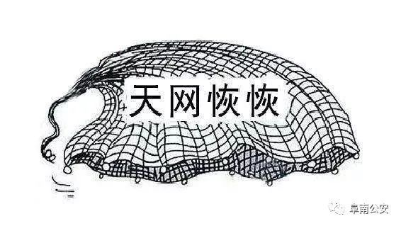 巧了!阜南警方在宣传扫黑除恶途中抓获一名网上逃犯