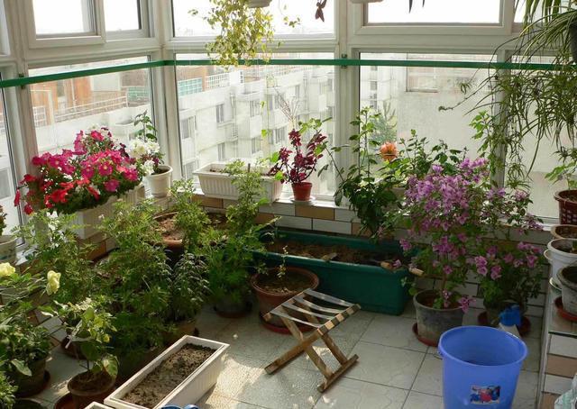 室内露台花园设计图片