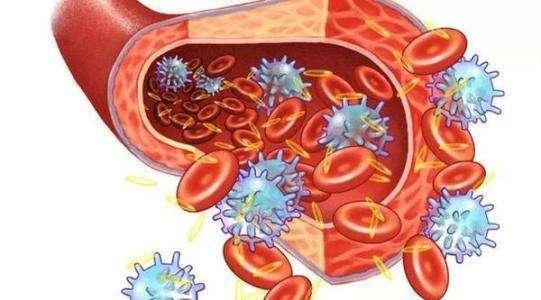 防止血栓形成,远离心血管医院