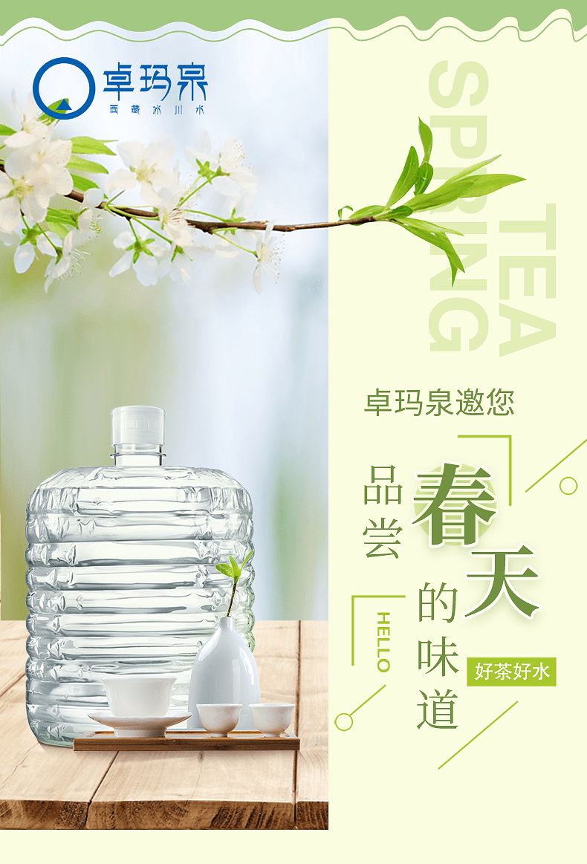卓玛泉春茶季|好茶好水,邀您品尝春天的味道