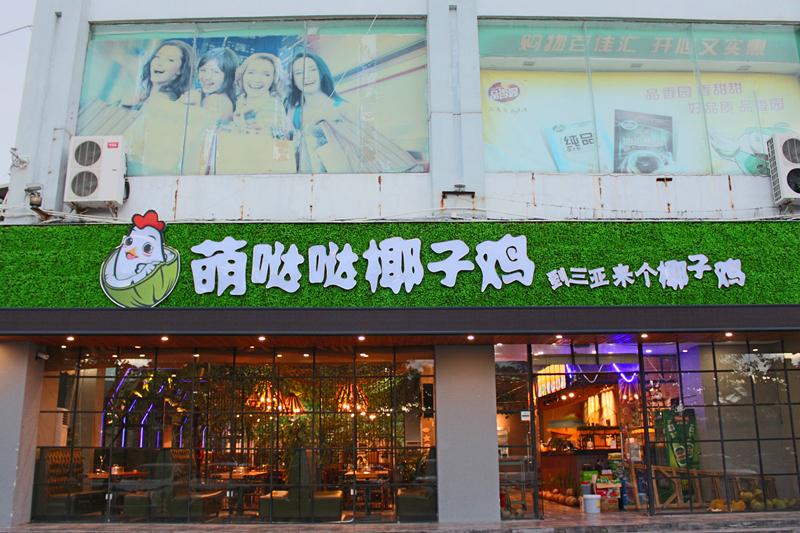 吃萌哒哒椰子鸡,游三亚湾夜景