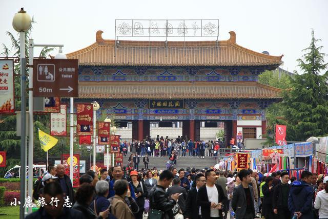 中国最火的牡丹观赏园:28万株牡丹绽放,游客来自全国各地