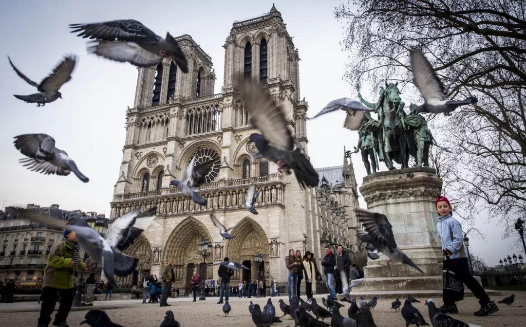 最新 火势已被控制,起火原因公布 巴黎圣母院灾后对比照片让人心痛