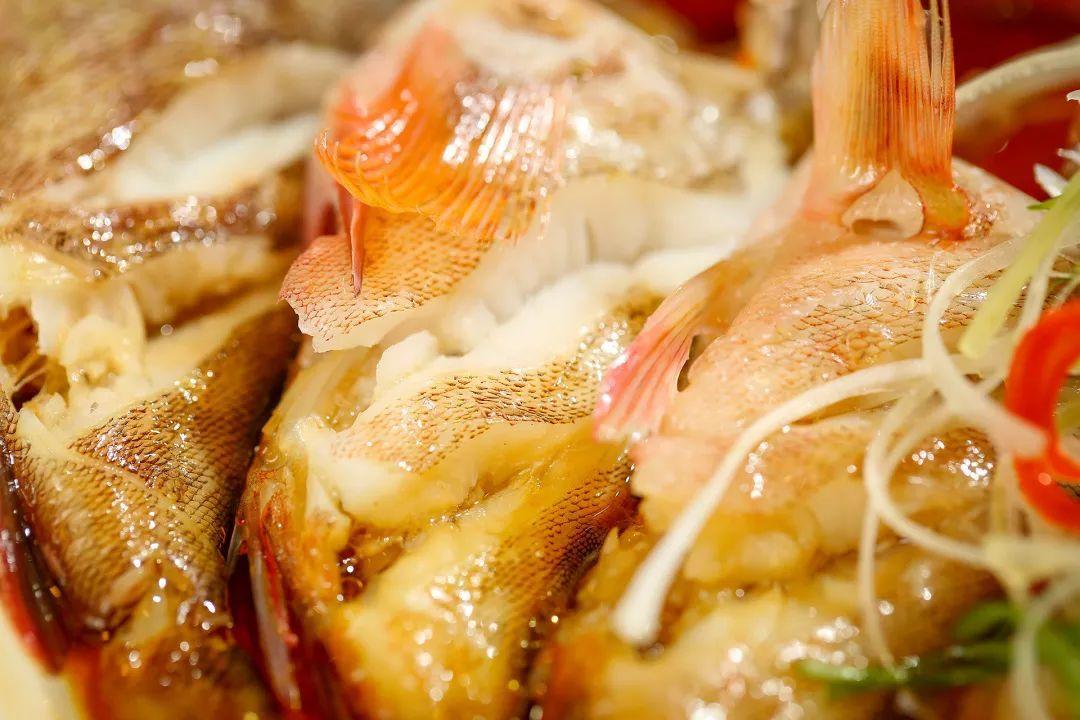 云龙湖边新开骚包色海鲜馆100+种直运海鲜还原了地道的温州味道!温州鱼缸 温州龙鱼论坛 温州龙鱼第9张