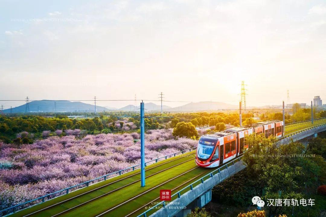 观点┆有轨电车和BRT差别不只在轨道