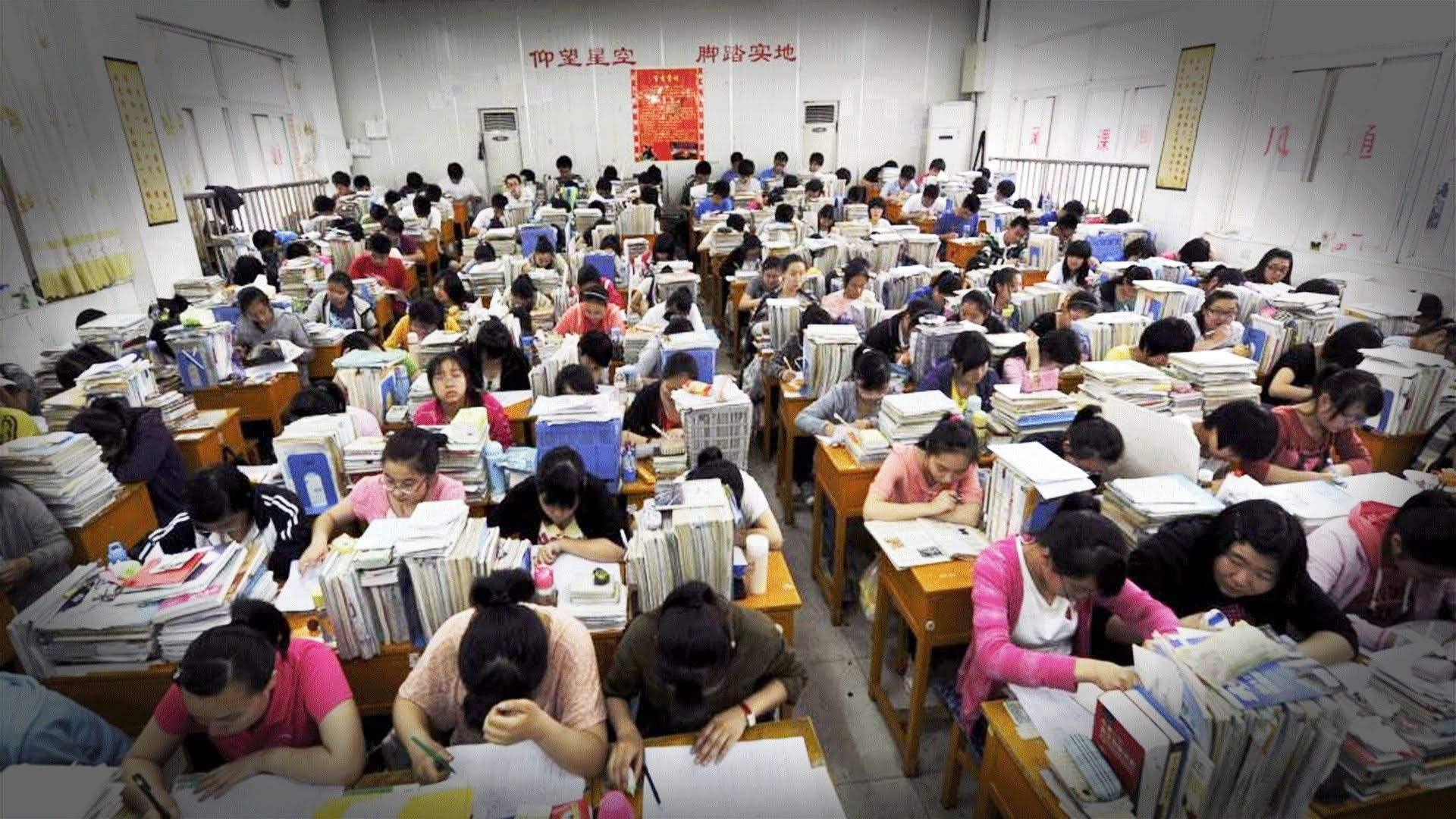点划教育吴老师做客中国教育电视台(CETV3)谈高考志愿填报
