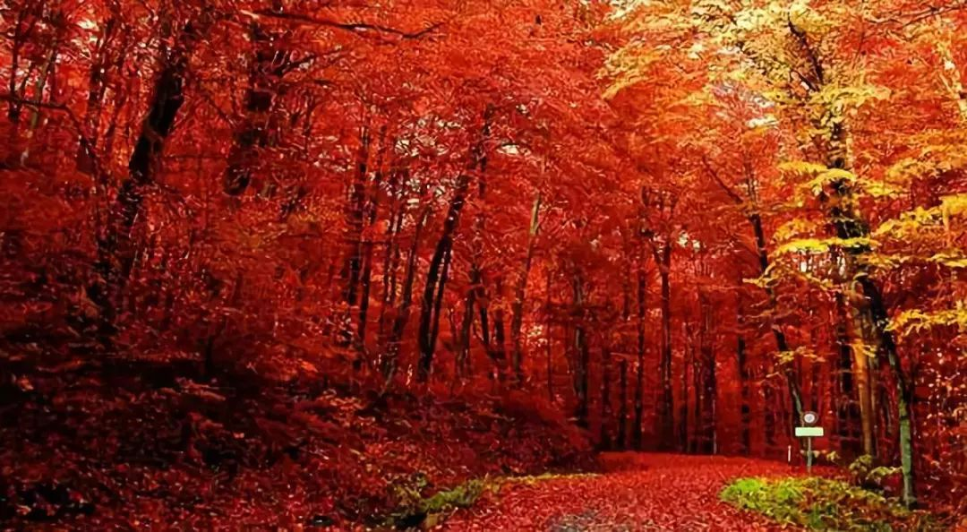 传说中最美的地方,存起来,慢慢走完图片