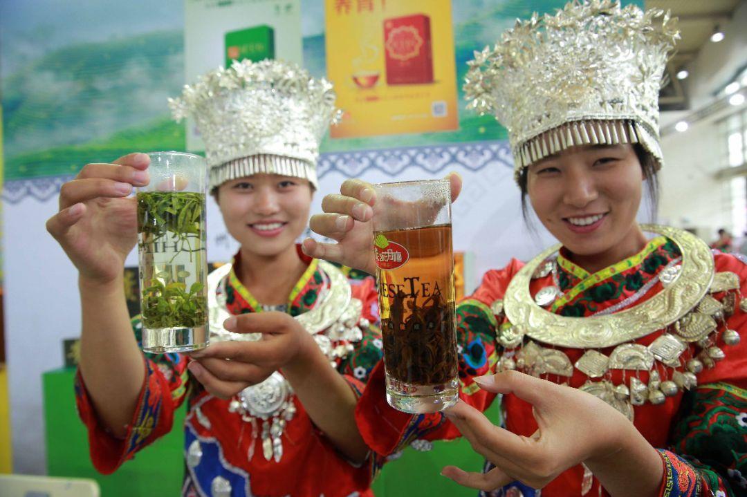 上春茶!4月底春茶香溢北京茶博会