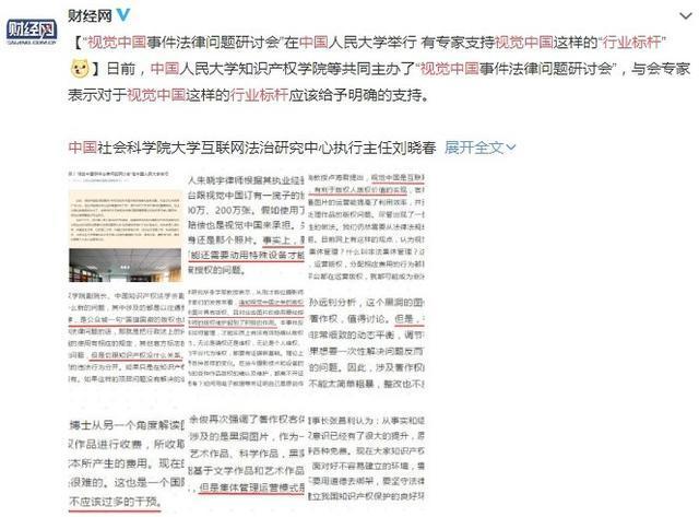 专家又亮了:对视觉中国这样的行业标杆应给与明确支持