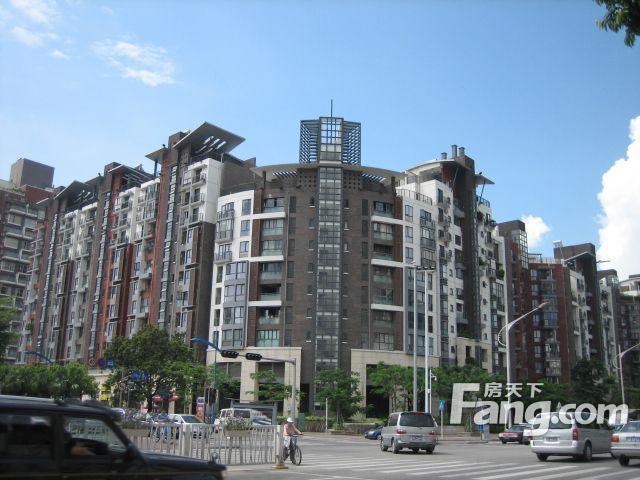 花园城一期 PK 阳光玫瑰园谁是深圳最热门小区?
