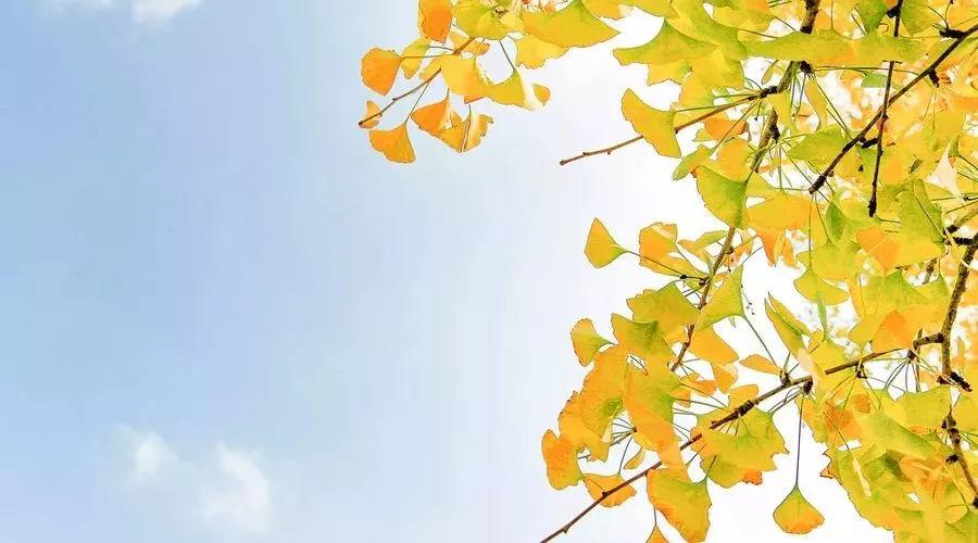 正能量满满的生活感悟 感悟人生精辟短句