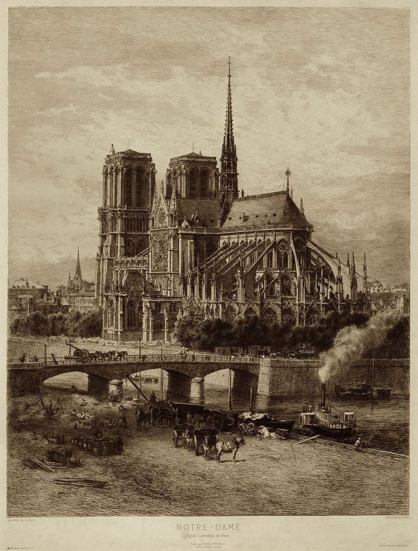 巴黎圣母院的读后感3000字 - 5068儿童网
