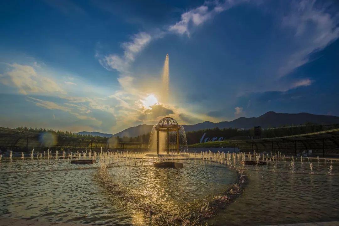 花海互动喷泉广场,以花型平面旱喷配合欧式廊亭渲染紫藤花的浪漫气氛