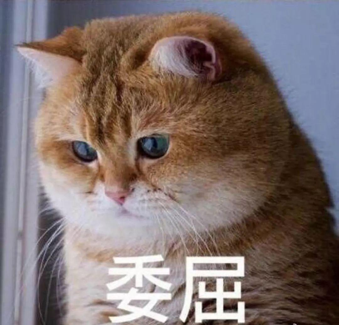 汽车消费陷阱多?广东30余家汽车经销商被约谈!附购车攻略