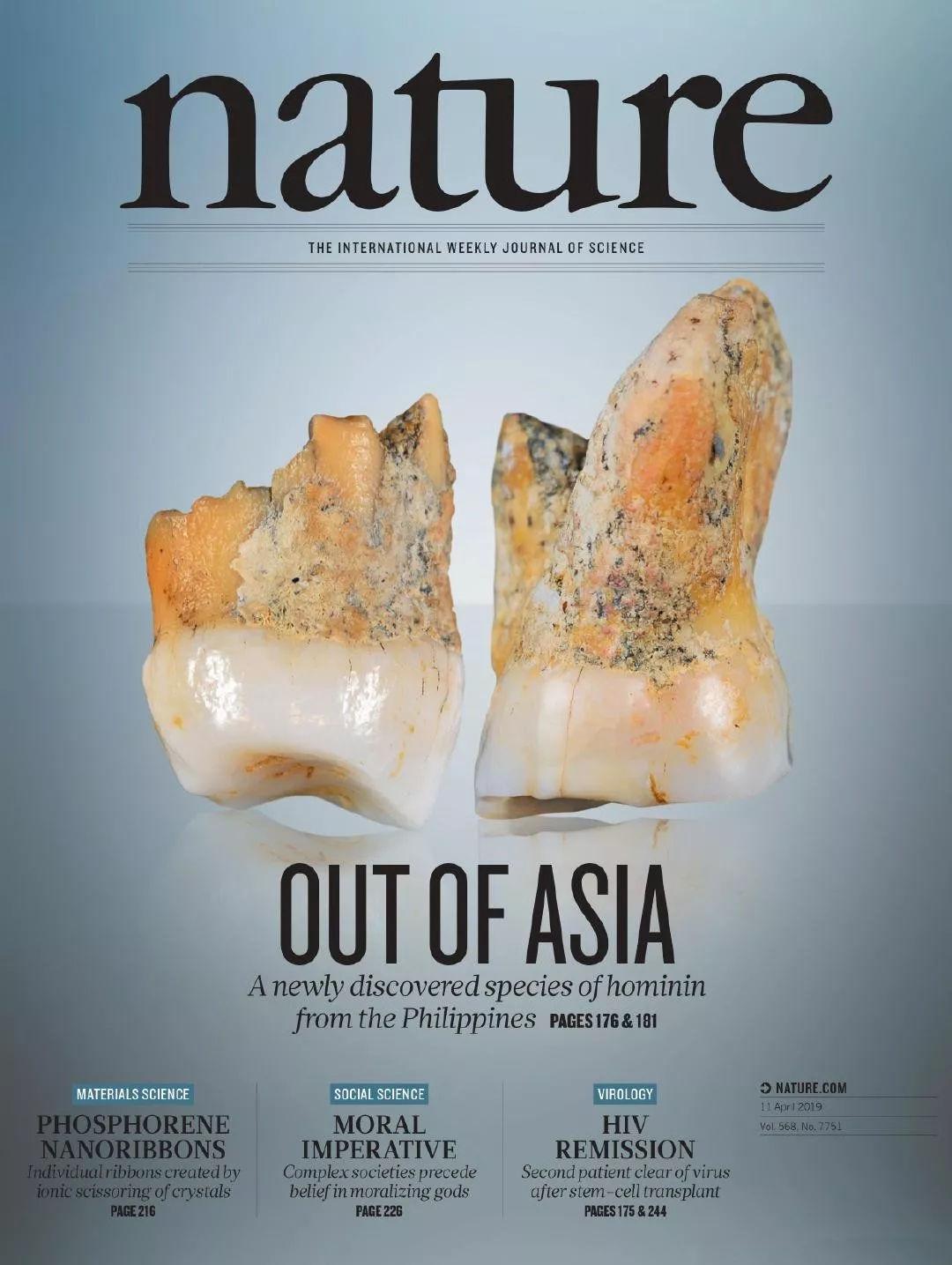 考古学家在菲律宾洞穴中发现新人类物种遗骸