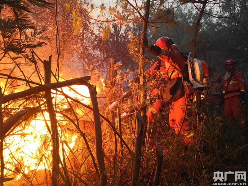 昆明龙池山发生森林火灾 350余人参与扑救