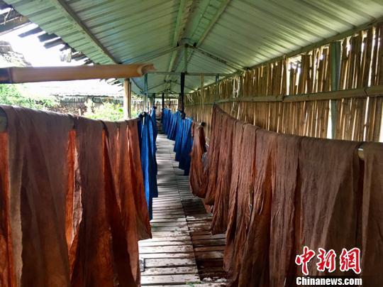 """贵州侗家织女将二十四节气""""染""""成24种蓝"""