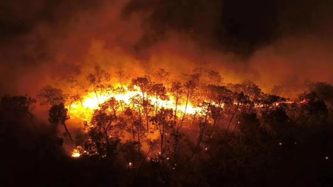 云南昨日发生多起森林火灾 2000多人连夜鏖战火场 多图直击