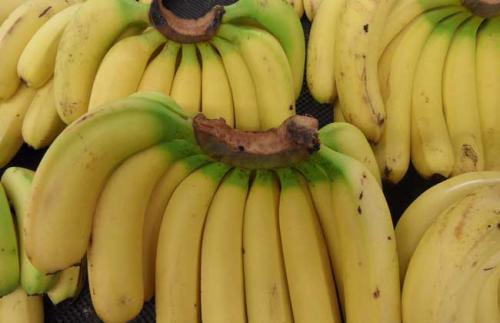 香蕉皮变黑之后,是腐烂坏掉了吗?告诉你这样的香蕉还能不能吃