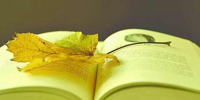 人最宝贵的是生命_人最宝贵的是生命 课件