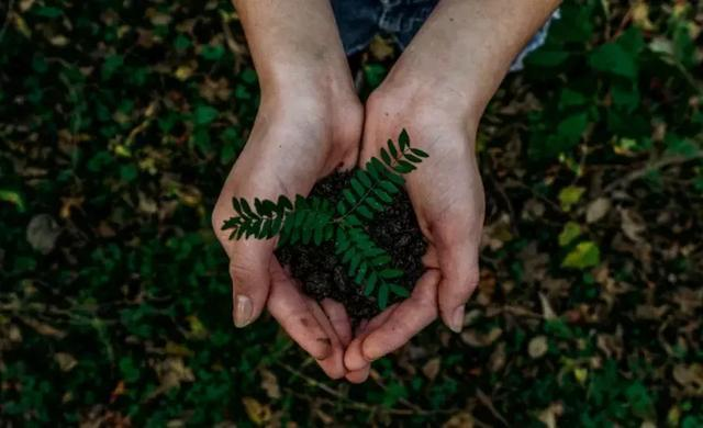 【太子乐快乐汇】世界地球日 | 珍爱美丽地球,守护自然资源