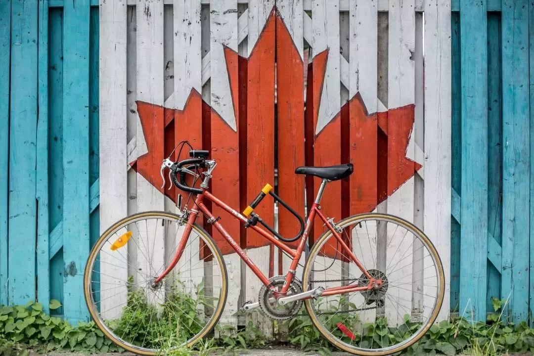 加拿大政府有意招收更多的国际留学生