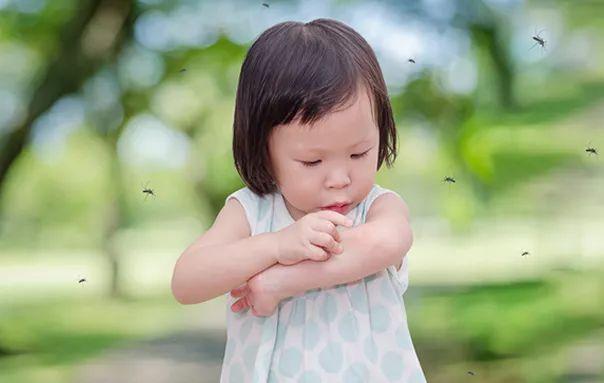 让蚊子不爱你,应该这样做!