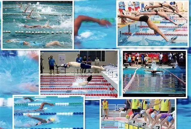 各种游泳比赛
