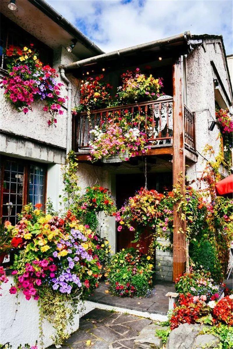 花园式窗台,美呆了!