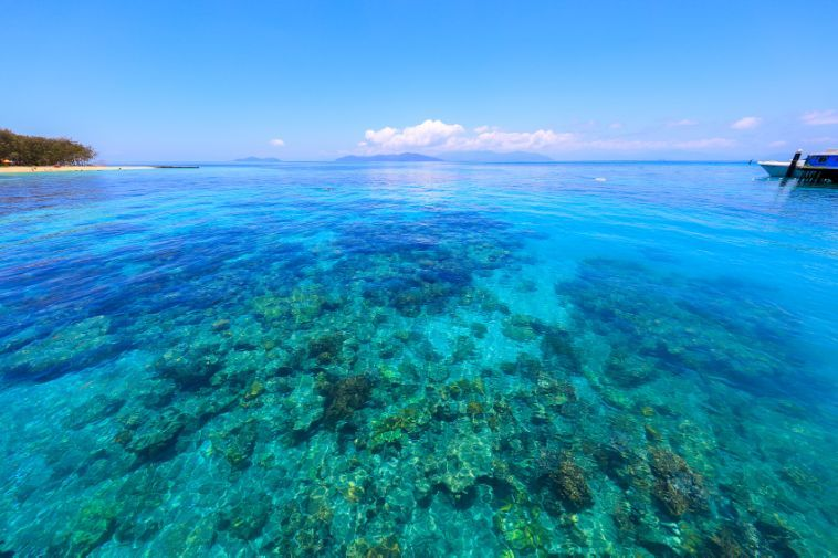 """""""大堡礁""""也要没了?赶紧去探访""""心形礁""""最后的浪漫传说吧!"""