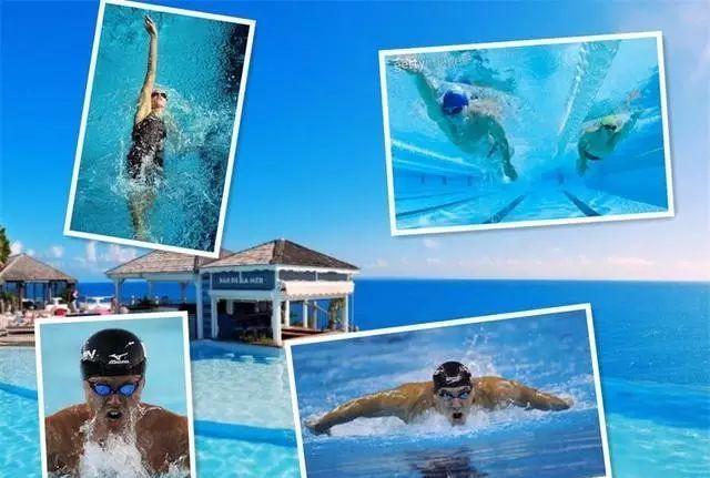 竞技比赛的四种泳姿
