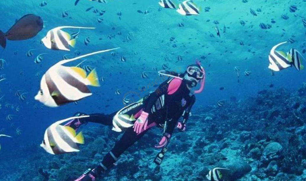 巴厘岛pk苏梅岛,五一到底去哪儿浪?