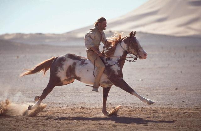 马为何从多趾变为一趾?跑得快不如跑得好,放慢速度才能活得更久