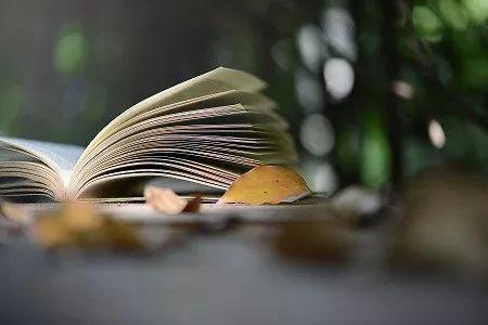 最是寂寞读书时