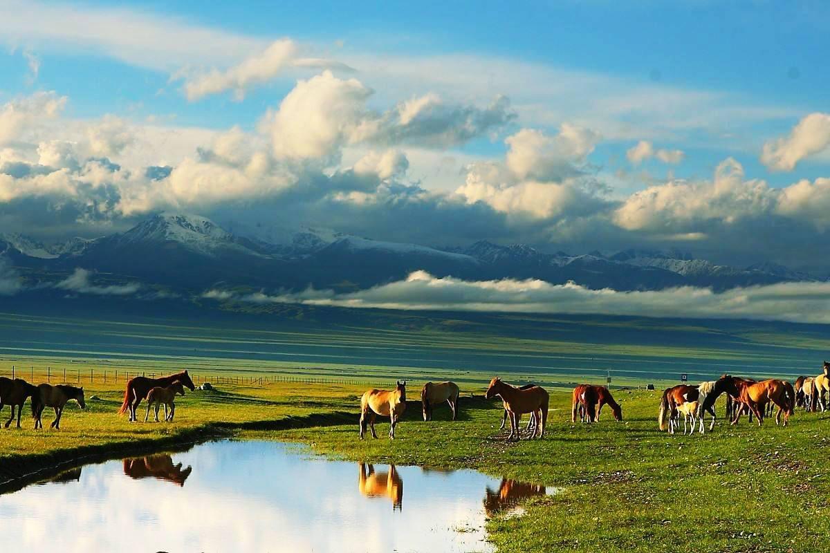 <b>5月新疆花海、大峡谷、怪石林、丹霞地貌、沙漠等北疆天山小环线风光精品小团</b>